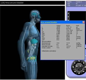 model1 Integrated 3D Body Scan